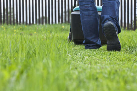 grass cutting: Man mowing lawn in his garden in summer Stock Photo
