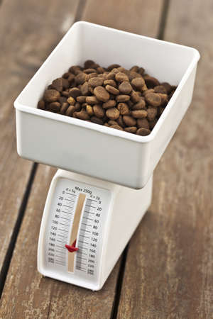 animal scale: Pets diet and Scale Stock Photo