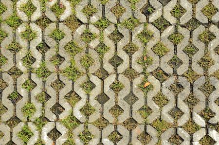 bloque de hormigon: pisos de bloques de concreto con la hierba Foto de archivo