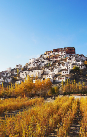 monastery: Monastery and meadow Stock Photo