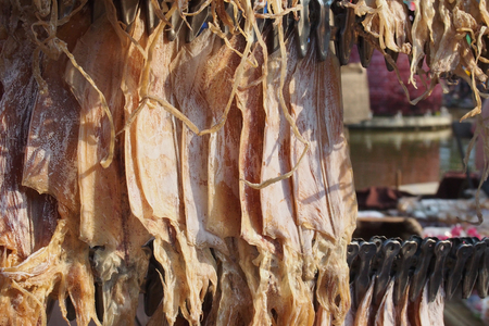 ingrediant: Dried squid for food