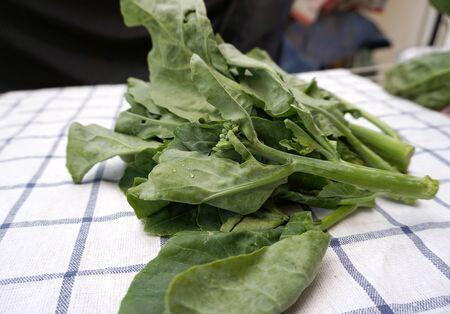 checker board: fresh green kale on the checker board fabric