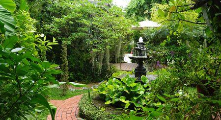circulo de personas: fuente de agua con paseo de ladrillo rojo y plantas tropicales Foto de archivo