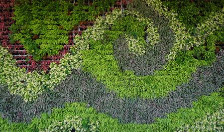 Verscheidenheid aan planten in verticale wand tuin structuur in golfvorm