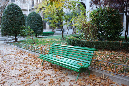 outdoor bench: Green outdoor bench  with autumn leaves Stock Photo