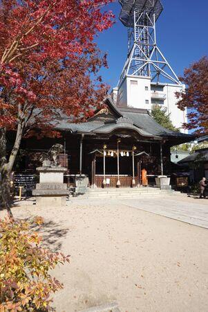 松本, 日本 - 2016 年 11 月 5 日: 2016 年 11 月 5 日松本、日本の松本日本 Yohashira 神社の紅葉