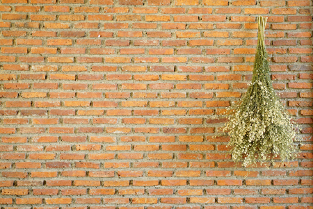 dried bouquet hanging on the orange brick wall background