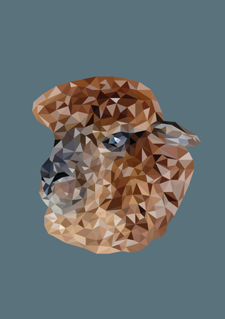 Abstract of Alpaca head shot low poly vector with dark background