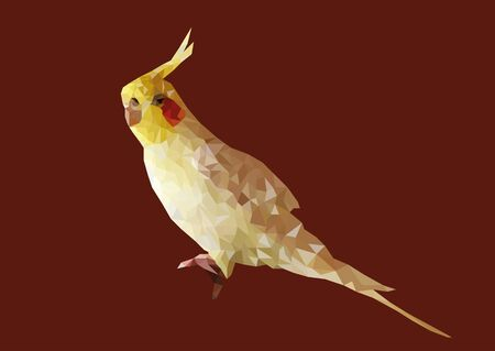 Abstract of yellow Cockatiel low poly vector with red background. Illustration