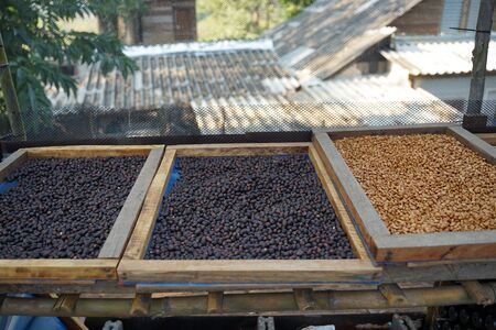 Close up of dried coffee beans in the wooden boxes on timber floor