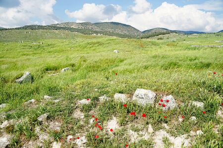 Beautiful landscape of Roman ancient ruins of hierapolis Pamukkale with meadow field