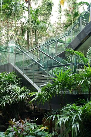 Modern outdoor staircase with clear glass balustrade surrounding with tropical plants and garden