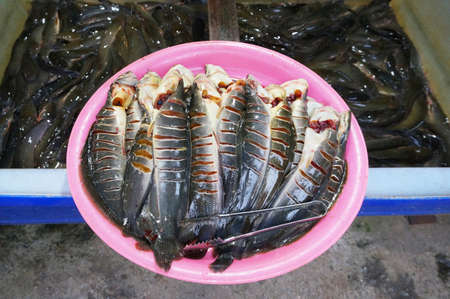 Pieces of fresh Catfish fish that were cut for sale in asian market Stock Photo