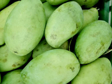Close up of photo of very fresh green mangoes background