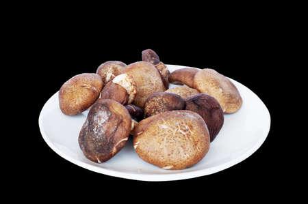 Fresh shiitake mushroom on white plate isolated on black background
