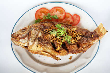white nile: Asia - Asian eating food, Thai food, fried Nile tilapia river fish ( Oreochromis niloticus ) with garlic, coriander, and slice of tomatoes, close up