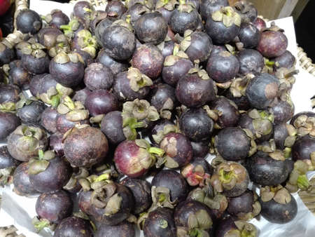 Close up of photo of very fresh mangosteen (Garcinia mangostana) preparing for sale