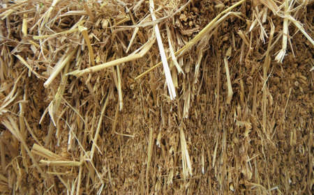 A photo of dry straw, hay, texture and background, close up