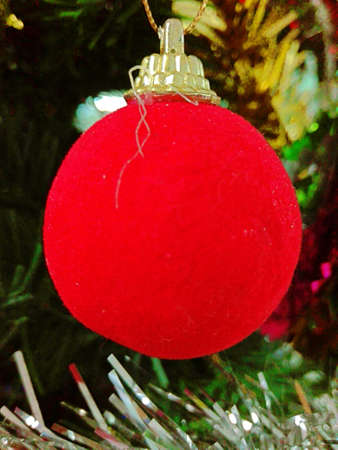 Chirstmas and New year concept: A photo of red ball hanging on a Christmas tree, close up