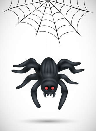 Scary spider isolated on white background. suitable for halloween background, poster, banner and flyer