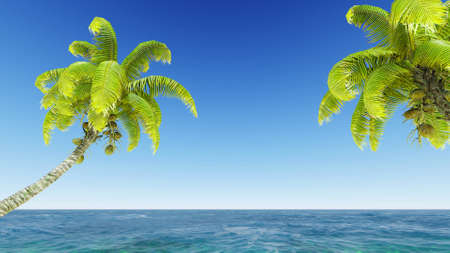 coconuts in the sea with blue sky photo