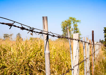 barbed wire fence: barbed wire fence blocking the meadow with blue sky Stock Photo