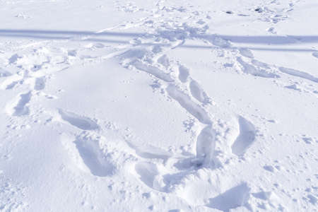 Footprint and hands on snow for texture background