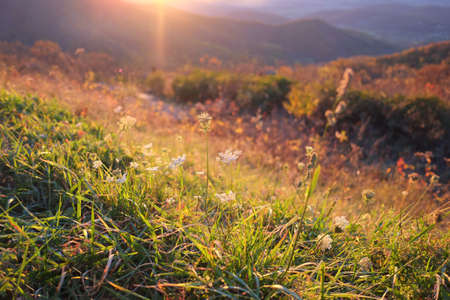 Sunset at Shenandoah national park in autumn