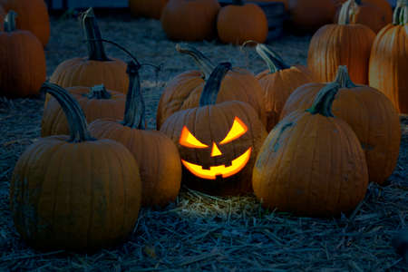 Halloween Pumpkins in the  yard at night.