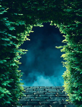 Tree arch gate over stone path with fog and smoke in the night in background. Reklamní fotografie