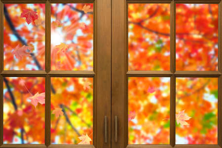 Wooden window frame with outside view of Autumn Maple leaves blowing in the wind under the tree and flare light of the sun.