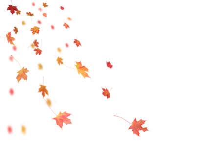 Falling Autumn Leaves. Reklamní fotografie