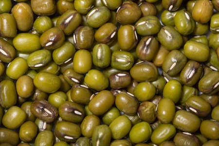 Macro background Mung bean Foto de archivo - 122759047