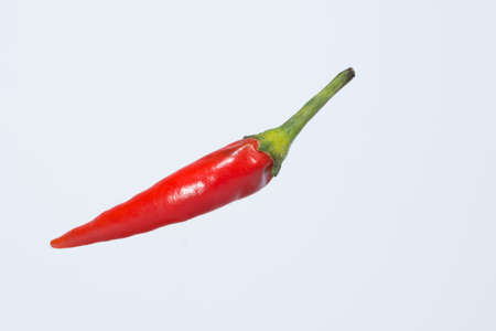 Red pepper white background Banco de Imagens