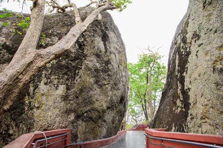 Scenic nature trail Фото со стока