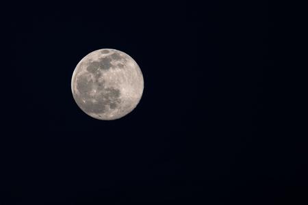 dark: moon in the dark