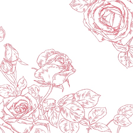 romance bed: Hand drawn beautiful roses