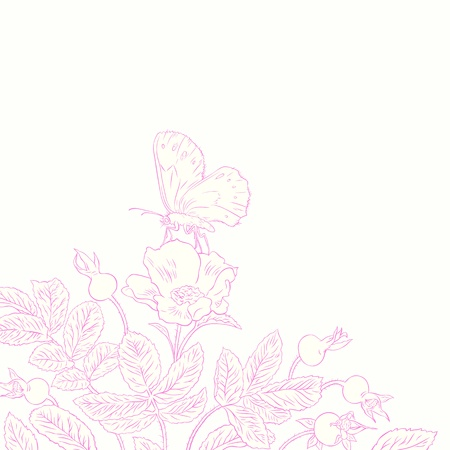 pencil drawn: contour drawing beautiful rosehip and butterfly Illustration