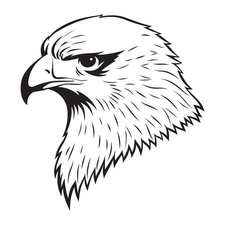 イーグル ヘッドの簡単な図  イラスト・ベクター素材