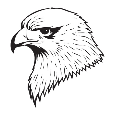 Simple illustration of Eagle head Vector
