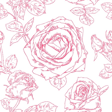 Seamless pattern with contour drawing beautiful roses Stock Vector - 18157056