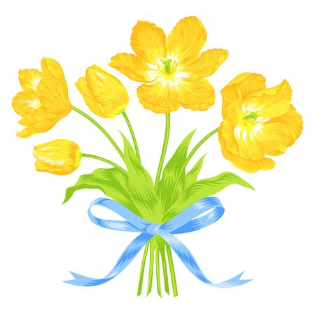 yellow vector: Vector illustration of beautiful yellow tulips bouquet  Illustration