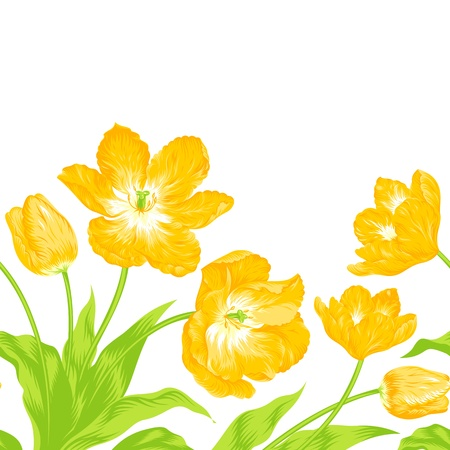illustration of beautiful tulips bouquet  Illustration