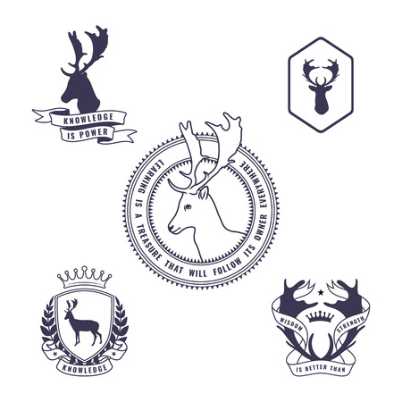 taxidermy: Vintage set of a labels, badges and decor elements.