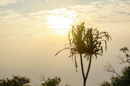 photo of beautiful sun rise