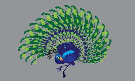 Isolated vector of a colourful dancing peacock, presented in ink energetic splashing style.