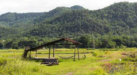 the old cabin thai style in the green field photo