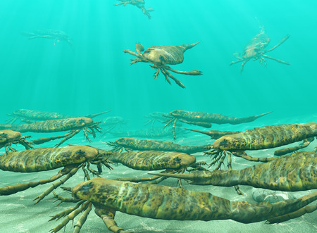 An illustration of eurypterids, also known as sea scorpions, gathering to seasonally spawn. Eurypterids are related to arachnids and include the largest known arthropods to have ever lived. They were formidable predators that thrived in warm shallow water