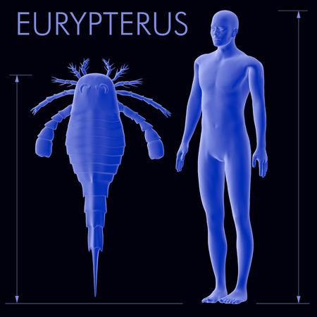Eine Abbildung einer durchschnittlichen Höhe menschlichen neben der größeren bekannten Eurypterus (Sea Scorpions) Arten. Eurypterids gehörten zu den größten Arthropoden zu je gelebt haben vor 460-248000000 Jahren existierten. Standard-Bild - 43140363