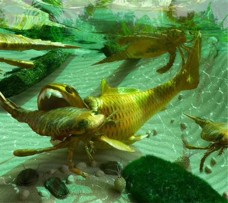 Eine Abbildung eines Devon (vor 419 bis 358.000.000 Jahre) See-Szene, das ein Kreislauf des Lebens. Die Eurypterids (Sea Scorpions) ernähren sich von den kleineren Trilobiten Wohnung auf dem Seegrund, während die enorme placoderm Fisch Dunkleosteus wiederum f Standard-Bild - 43140718